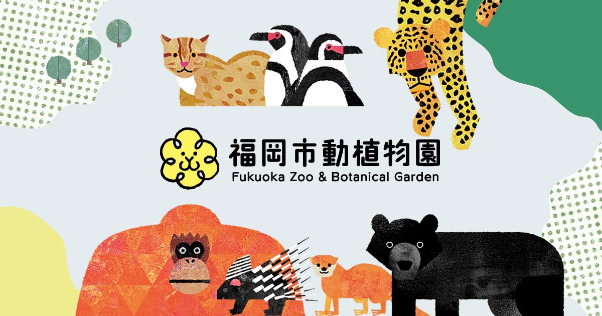 zoo202002